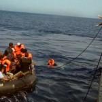 asylum for those in need - innerstream